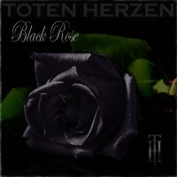album-black-rose