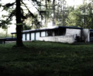 forest-house